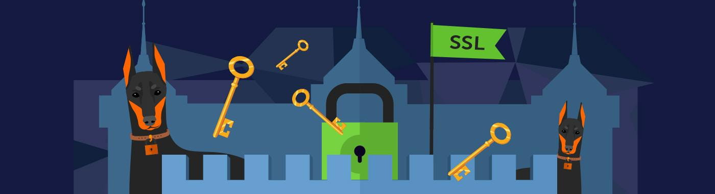 SSL Certificates with security locks image