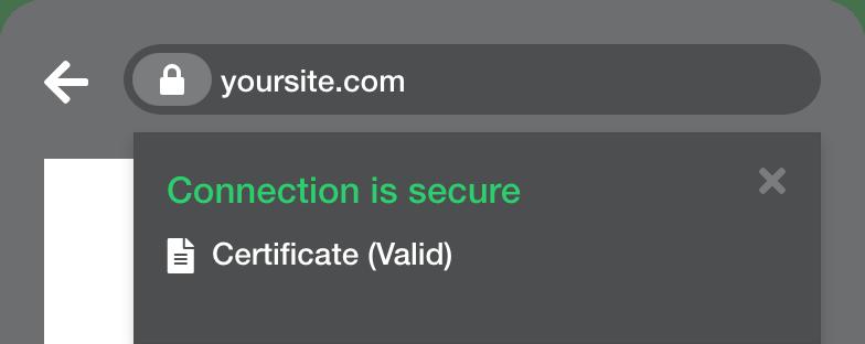 Domain Validation (DV)