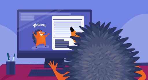 Hedgehog looking at his personal website
