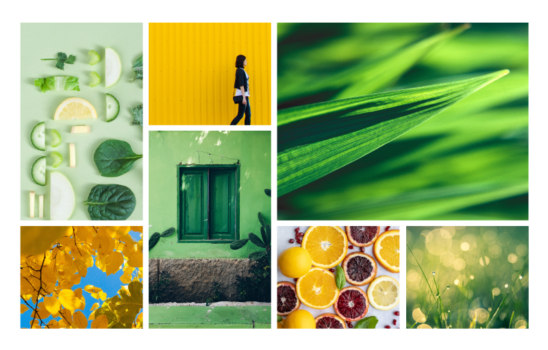 A collage of photographs including natural elements such as grass and fruit illustrates how to make a mood board.